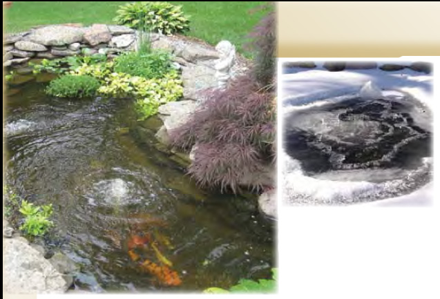 Air pumps for ponds for Ornamental pond filters